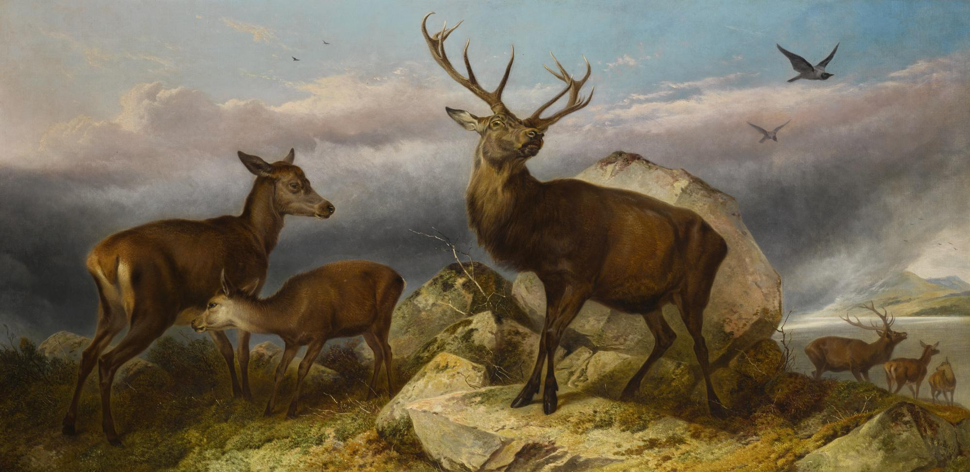 RICHARD ANSDELL, R.A. | HOME OF THE RED DEER