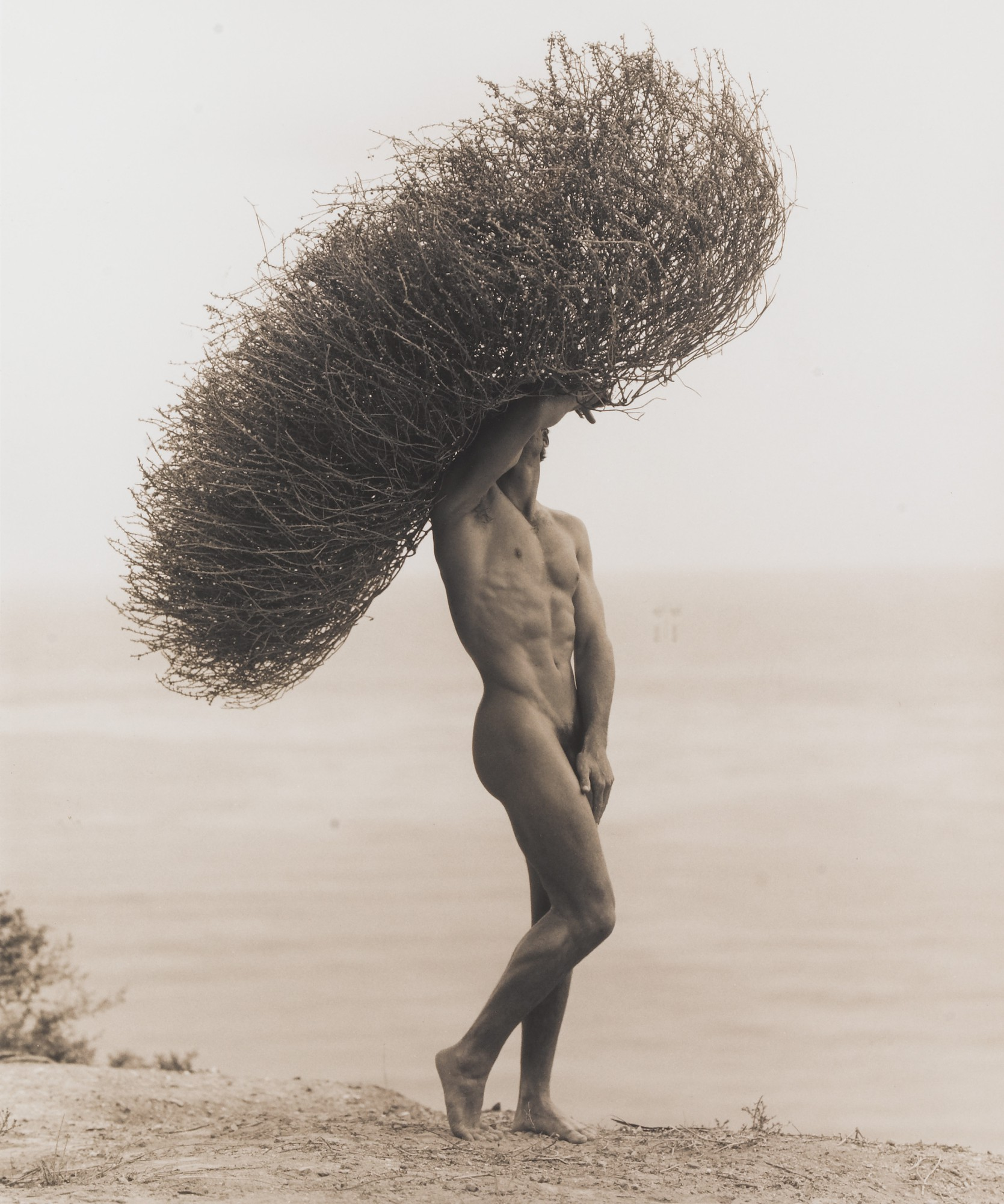 Herb Ritts | Male Nude with Tumbleweed, Paradise Cove, 1986