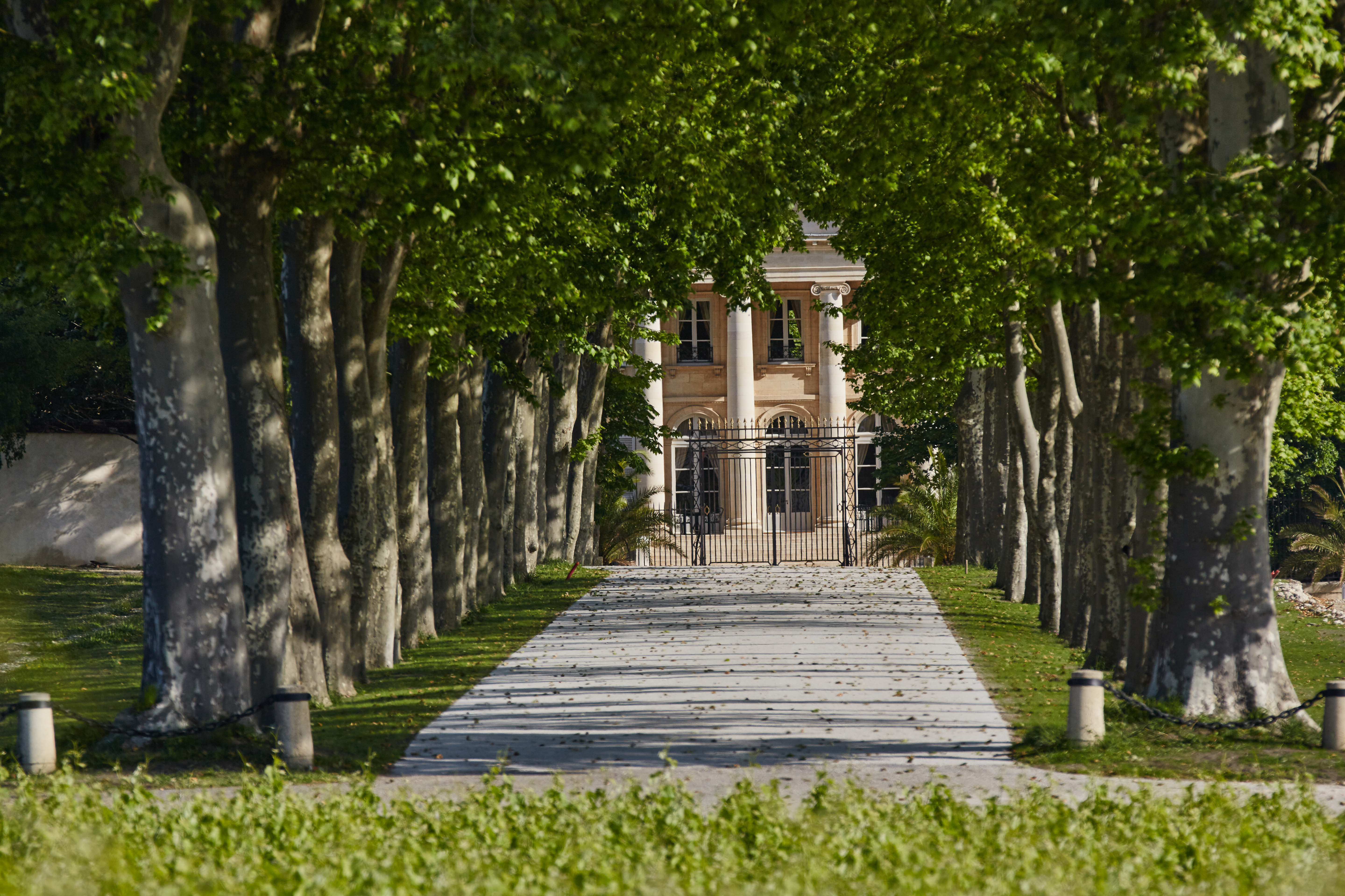 View full screen - View 1 of Lot 338. Château Margaux 2000  (6 MAG).