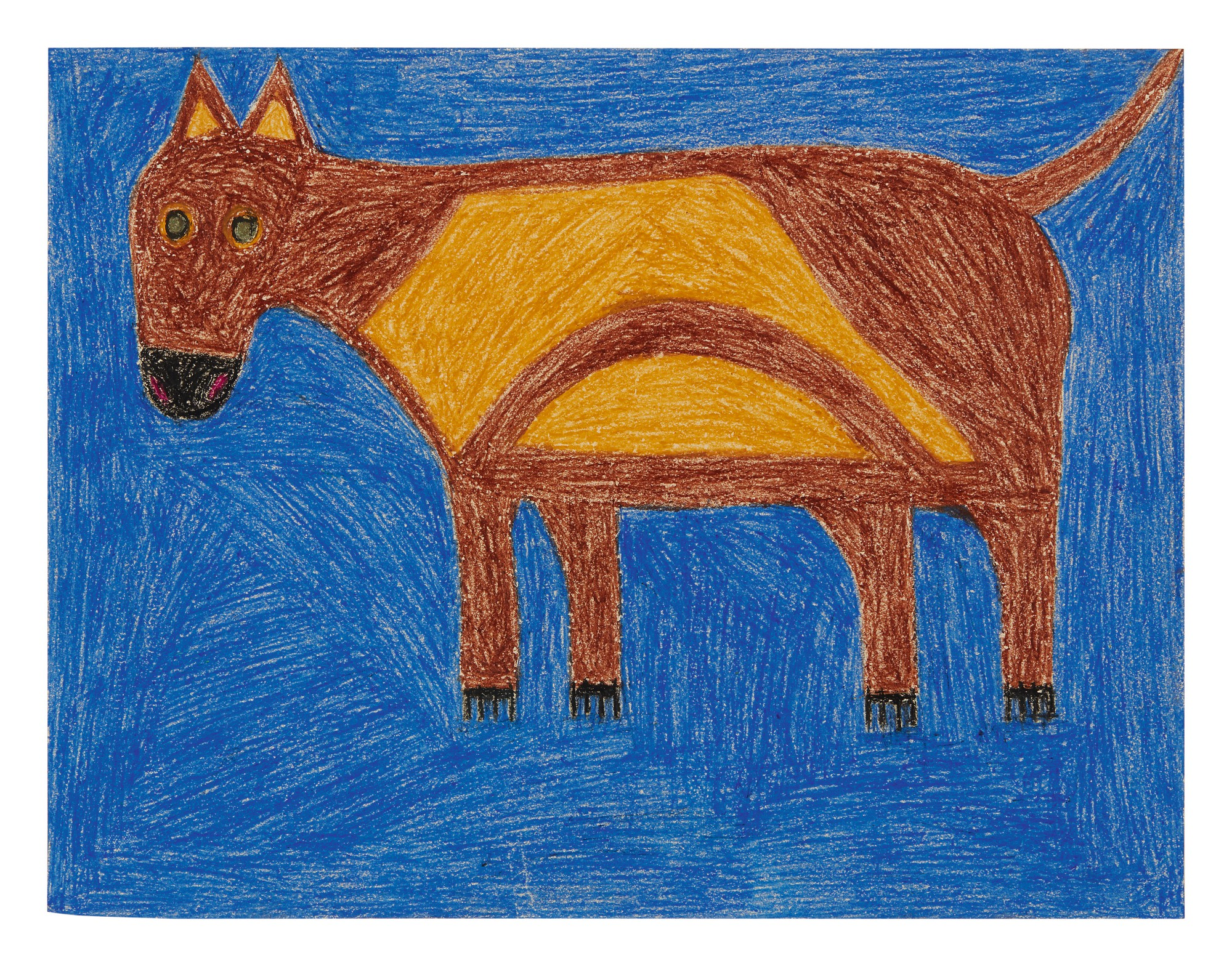 EDDIE ARNING | BROWN DOG WITH YELLOW AND BLUE