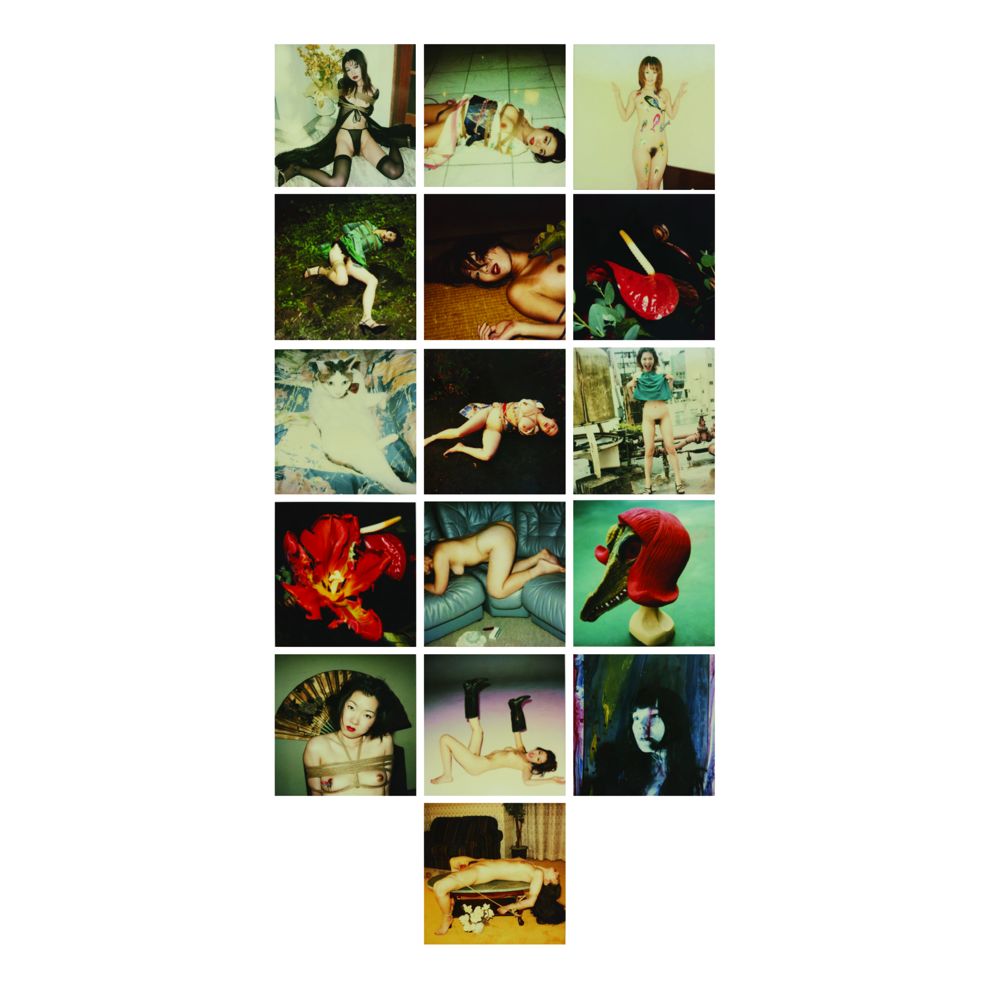 NOBUYOSHI ARAKI | SELECTED IMAGES FROM POLA EROS