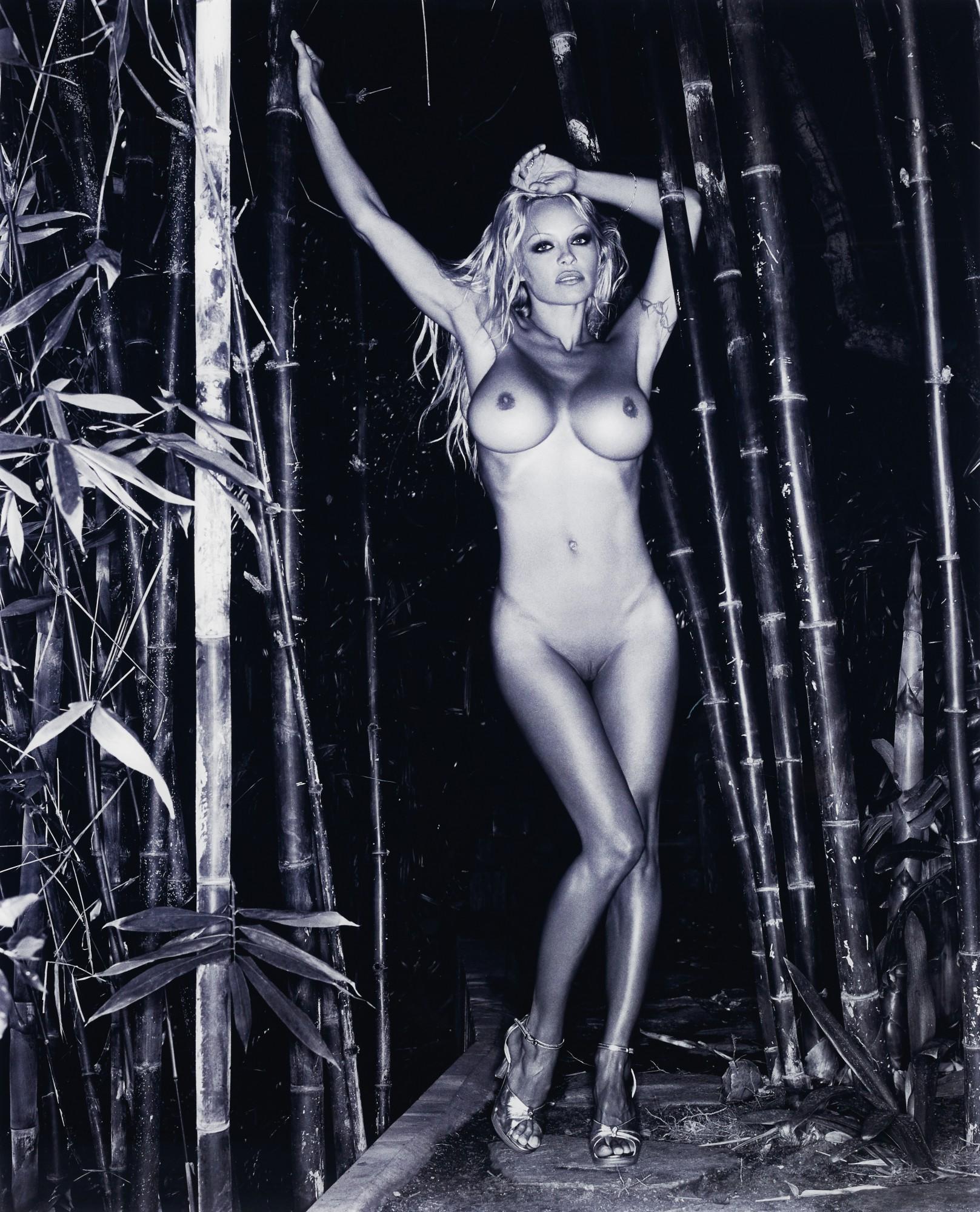 Nude Pamela Andersson Nude Jpg