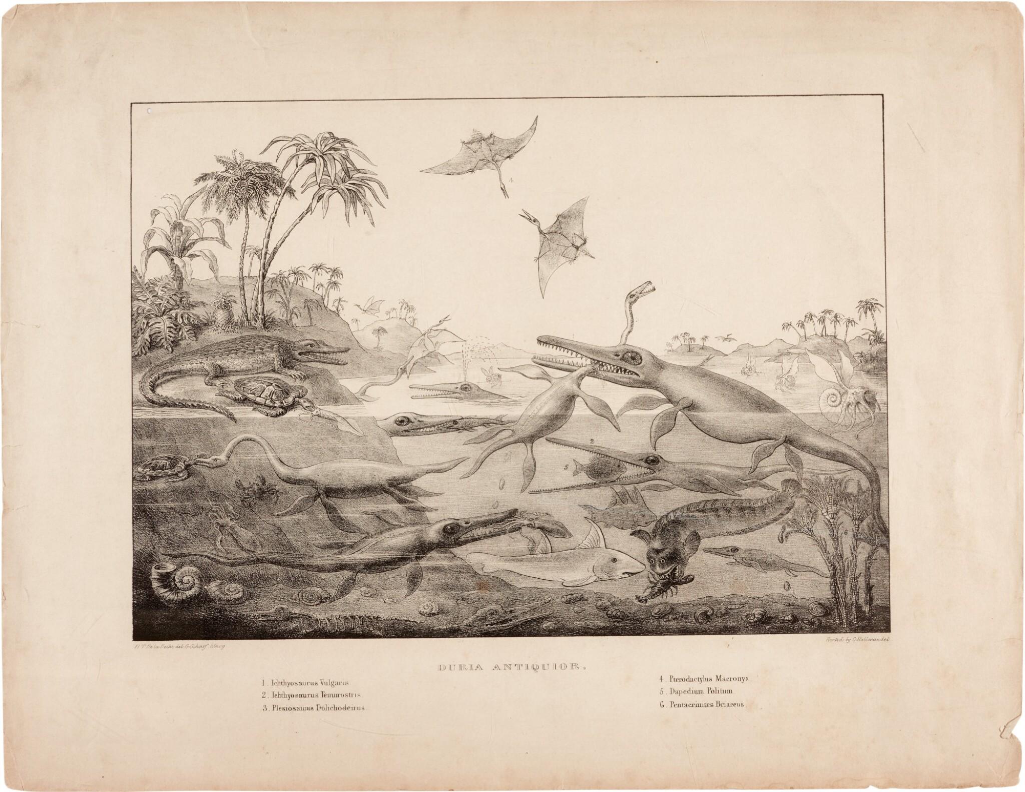 View full screen - View 1 of Lot 16. Henry de la Beche | Duria Antiquior, lithograph, 1830.