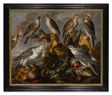 View 2. Thumbnail of Lot 532. A group of seven Lanner and Peregrine or Gyrfalcons.