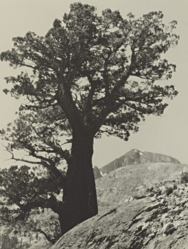 View 9. Thumbnail of Lot 78. The Sierra Club Outing, 1929.