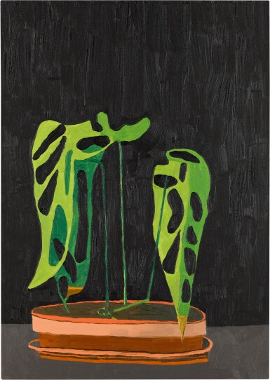 JONAS WOOD | NIGHT PLANT