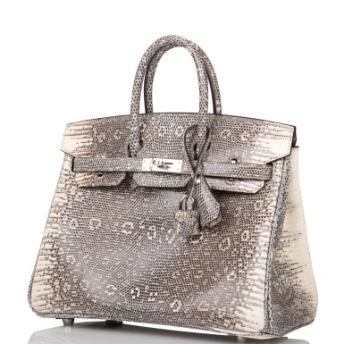View 5. Thumbnail of Lot 2. Hermès Ombre Birkin 25cm of Varanus Salvator Lizard with Palladium Hardware.