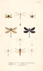 Album with a collection of 73 watercolours and drawings to illustrate Expédition scientifique de Morée, 1832-36