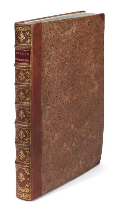 View 4. Thumbnail of Lot 52. Trew   Hortus Nitidissimis, 1750-1786.