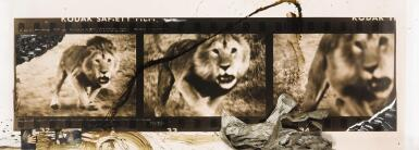 PETER BEARD | 'LOLIONDO LION CHARGE, FOR THE END OF THE GAME / LAST WORD FROM PARADISE', 1964