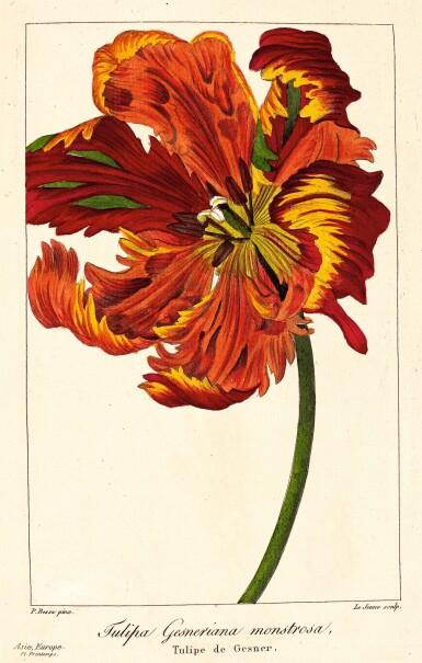 View 1. Thumbnail of Lot 345. Bessa. Flore des jardiniers, amateurs et manufacturiers. 1836. 2 volumes.
