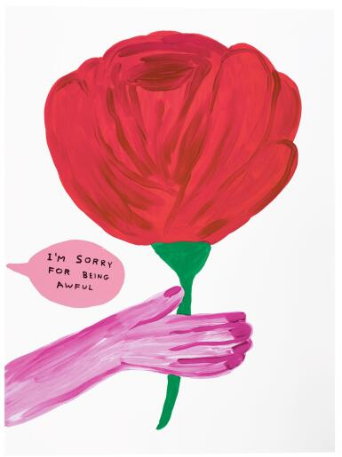 DAVID SHRIGLEY | I'M SORRY FOR BEING AWFUL