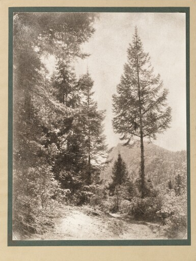 View 2. Thumbnail of Lot 7. EDMOND HAMEL | PHOTOGRAPHS FROM AROUND MEXICO CITY, 1903-1919.
