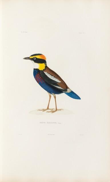 View 3. Thumbnail of Lot 216. VAILLANT. Voyage autour du monde... Paris, Arthus Bertrand, 1840. 16 vol. Reliure moderne, demi-veau..