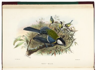 View 2. Thumbnail of Lot 23. Keulemans | A Natural History of Cage Birds, 1871.