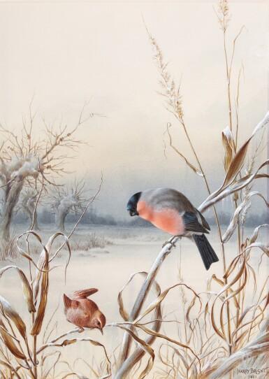 View 3. Thumbnail of Lot 141. Summer - A Pair of Bullfinch; Winter - A Cock Bullfinch and Wren.