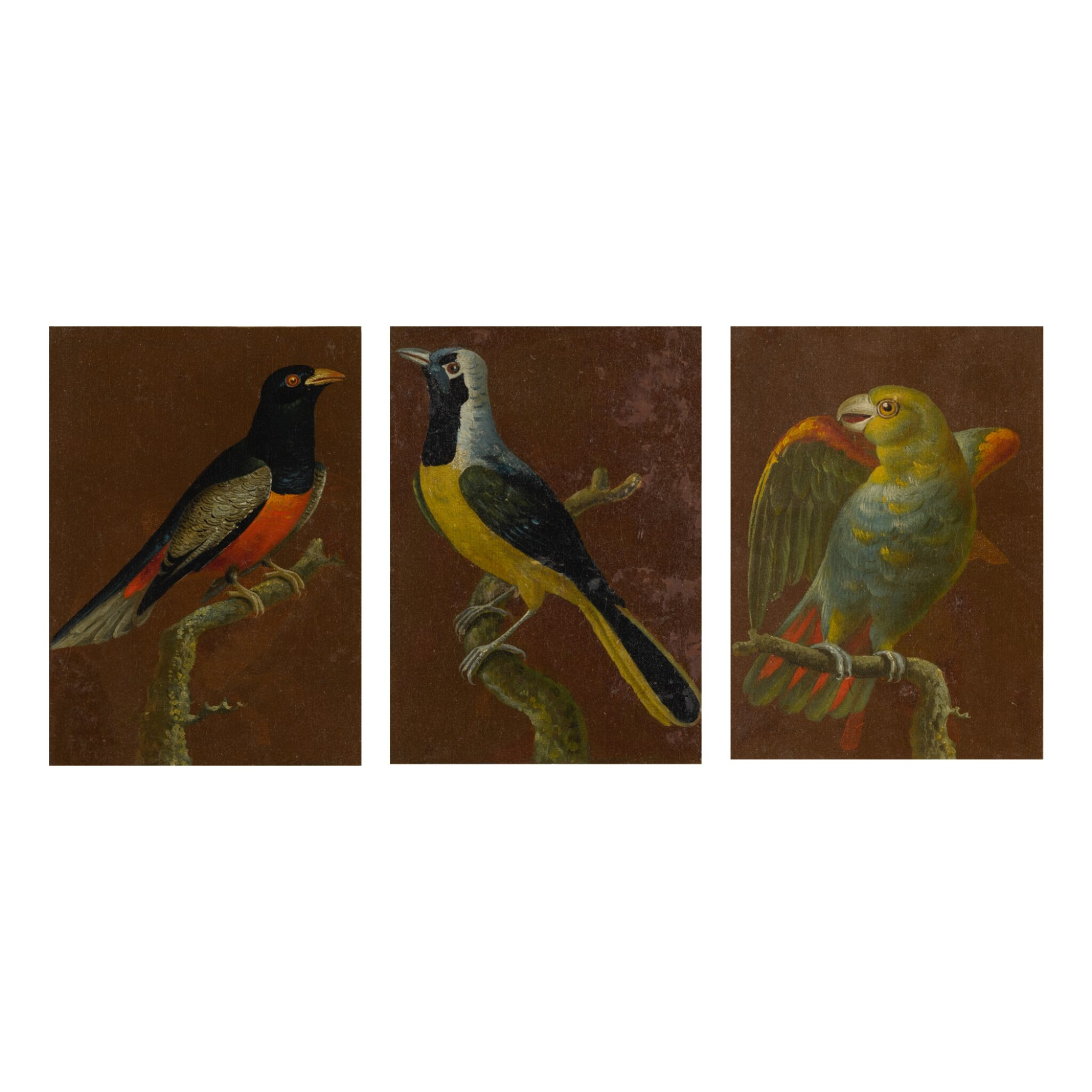 View full screen - View 1 of Lot 109. CONTINENTAL SCHOOL, 19TH CENTURY   BIRDS: A SET OF THREE PAINTINGS.