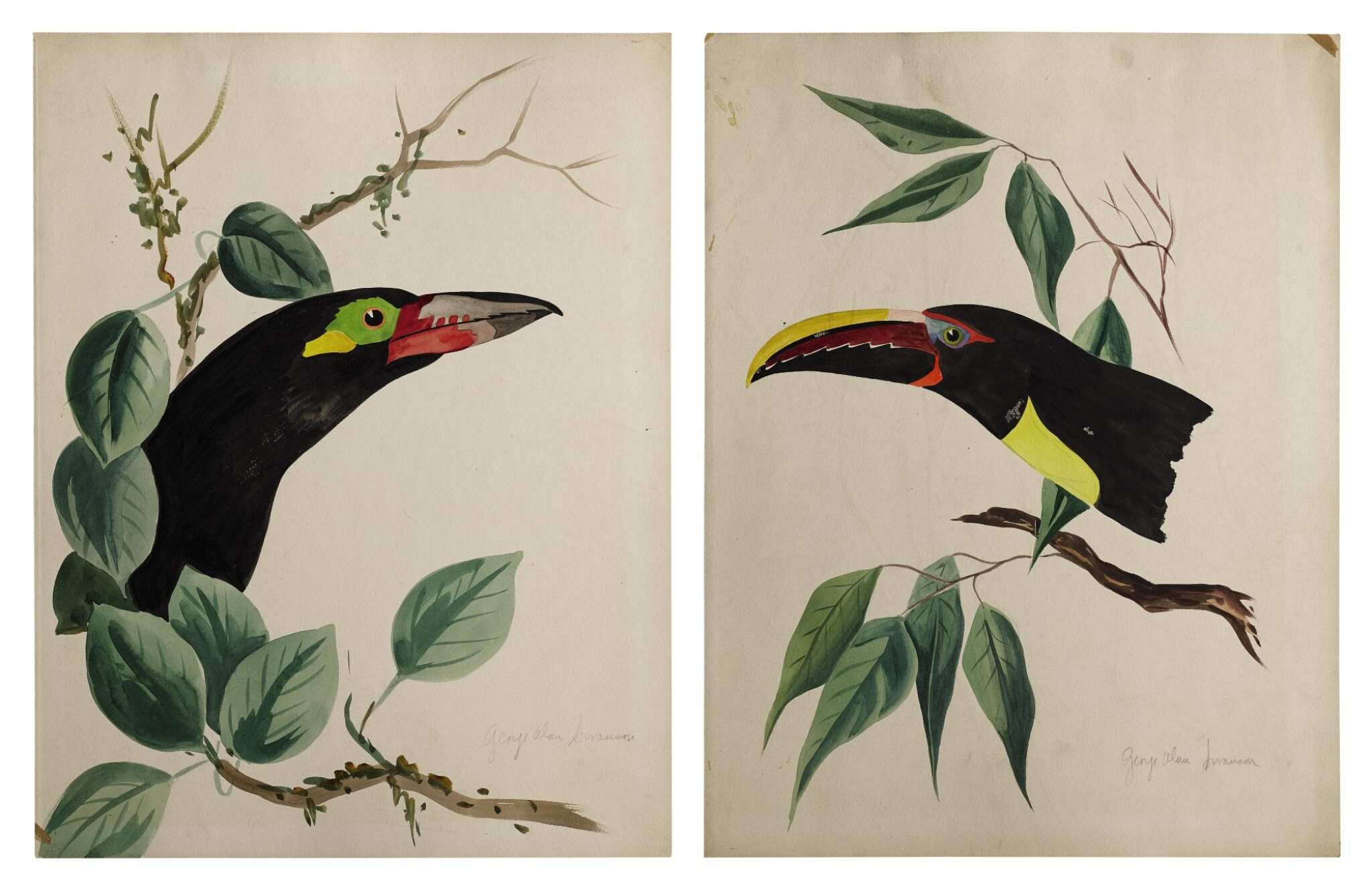 View full screen - View 1 of Lot 20. TWO WORKS: TROPICAL BIRDS IN TREES.