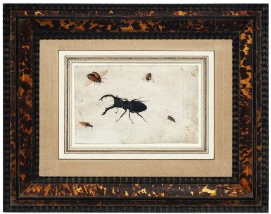 View 4. Thumbnail of Lot 132. GERMAN SCHOOL, CIRCA 1600    A PAIR OF STUDIES OF A BEETLE AND OTHER INSECTS.