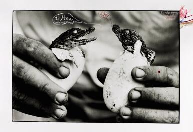 PETER BEARD | 'TO HENRY & HAPPY EASTER' (MINGLED DESTINIES OF CROCODILES AND MAN), MOITE BAY, LAKE RUDOLF, 1965