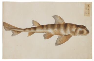 View 20. Thumbnail of Lot 118. ATTRIBUTED TO KAWAHARA KEIGA (1786–1860) STUDIO, EDO PERIOD, 19TH CENTURY, A GROUP OF TWENTY-FOUR FISH.