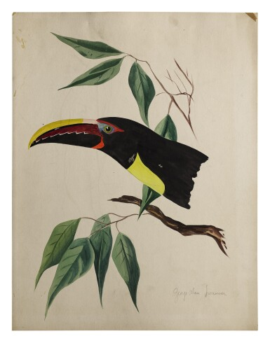 View 4. Thumbnail of Lot 20. TWO WORKS: TROPICAL BIRDS IN TREES.