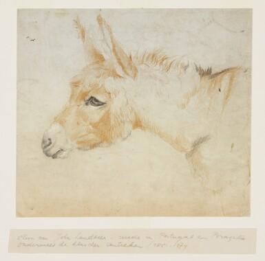 CIRCLE OF JOHN GEORGE LANDSEER A.R.A. | Study of a donkey