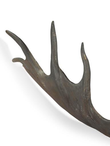 View 5. Thumbnail of Lot 1. A pair of fossilised 'Irish elk' antlers, Prehistoric.