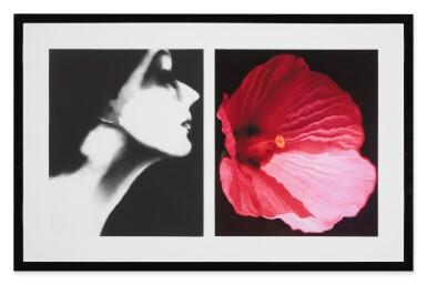 View 2. Thumbnail of Lot 65. Lisa Fonssagrives, Harper's Bazaar, and Flower 28 (Pink Mallow): a diptych.