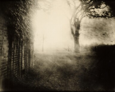 View 1. Thumbnail of Lot 73. Untitled (Deep South #41).