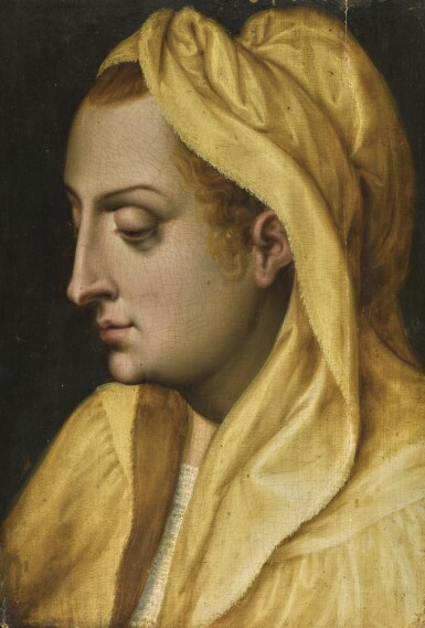 ATTRIBUTED TO FRANS FLORIS THE ELDER | Head of a female figure