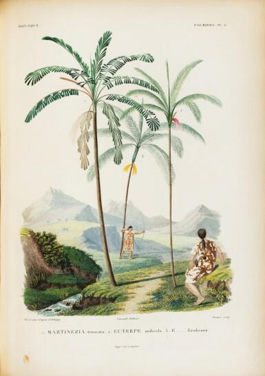 View 5. Thumbnail of Lot 137. ORBIGNY. Voyage dans l'Amérique Méridionale... Paris et Strasbourg, 1834-1847.9 vol in-4. Demi-rel. de l'ép. .