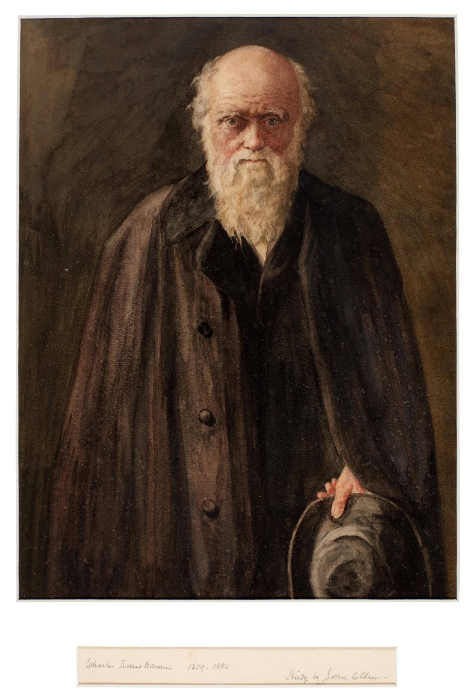 View full screen - View 1 of Lot 45. DARWIN   A watercolour portrait of Darwin by John Collier.