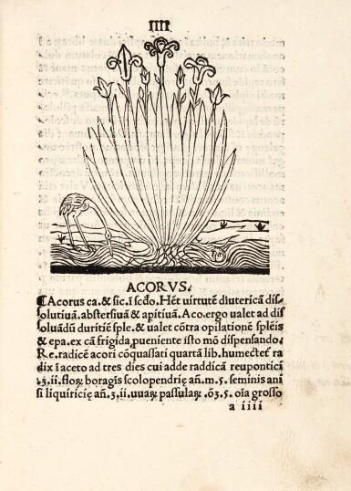 [Herbal] | Incipit tractatus de virtutibus herbarum, (1509)