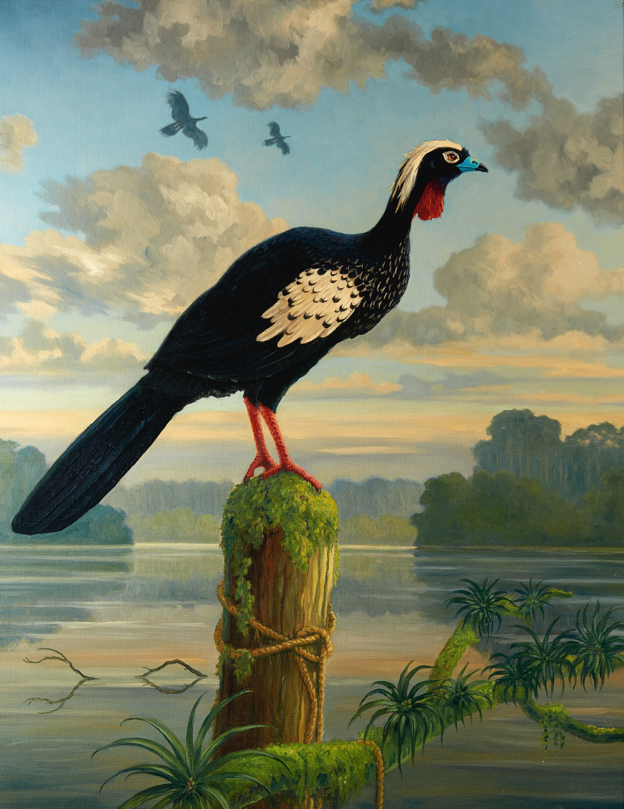 View 1 of Lot 19. Hughes   Black-fronted Piping-guan, 1998, oil on canvas.