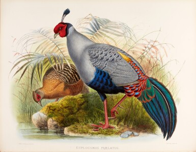 View 2. Thumbnail of Lot 9. Daniel Giraud Elliot | Monograph of the Phasianidae, or Family of the Pheasants, 1870-1872, coloured plates.