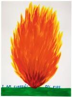 DAVID SHRIGLEY     I AM CURRENTLY ON FIRE