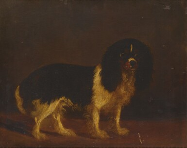 View 1. Thumbnail of Lot 83. ENGLISH SCHOOL, 19TH CENTURY | PORTRAIT OF A CAVALIER KING CHARLES SPANIEL.