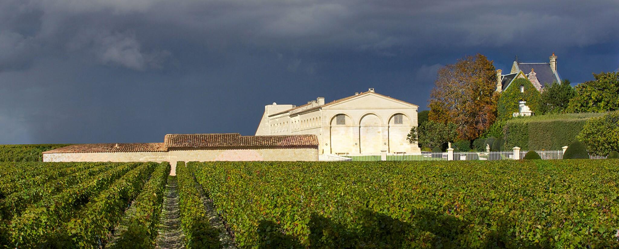 View full screen - View 1 of Lot 32. Château Mouton Rothschild 2003  (12 BT) .