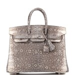Hermès Ombre Birkin 25cm of Varanus Salvator Lizard with Palladium Hardware