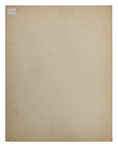 View 3. Thumbnail of Lot 11. CLARION ANGELFISH | PARROTFISH  .