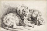 Two lions, after Rubens
