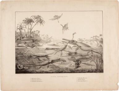 View 1. Thumbnail of Lot 16. Henry de la Beche | Duria Antiquior, lithograph, 1830.