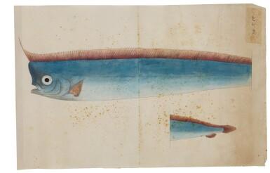 View 24. Thumbnail of Lot 118. ATTRIBUTED TO KAWAHARA KEIGA (1786–1860) STUDIO, EDO PERIOD, 19TH CENTURY, A GROUP OF TWENTY-FOUR FISH.