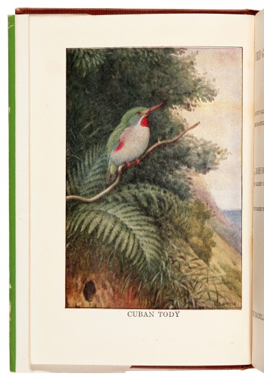 View 3. Thumbnail of Lot 109. BOND | Field Guide of Birds in the West Indies, 1947, presentation copy.