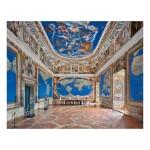 AHMET ERTUĞ   'ROOM OF THE WORLD MAP, VILLA FARNESE, CAPRAROLA, ITALY'