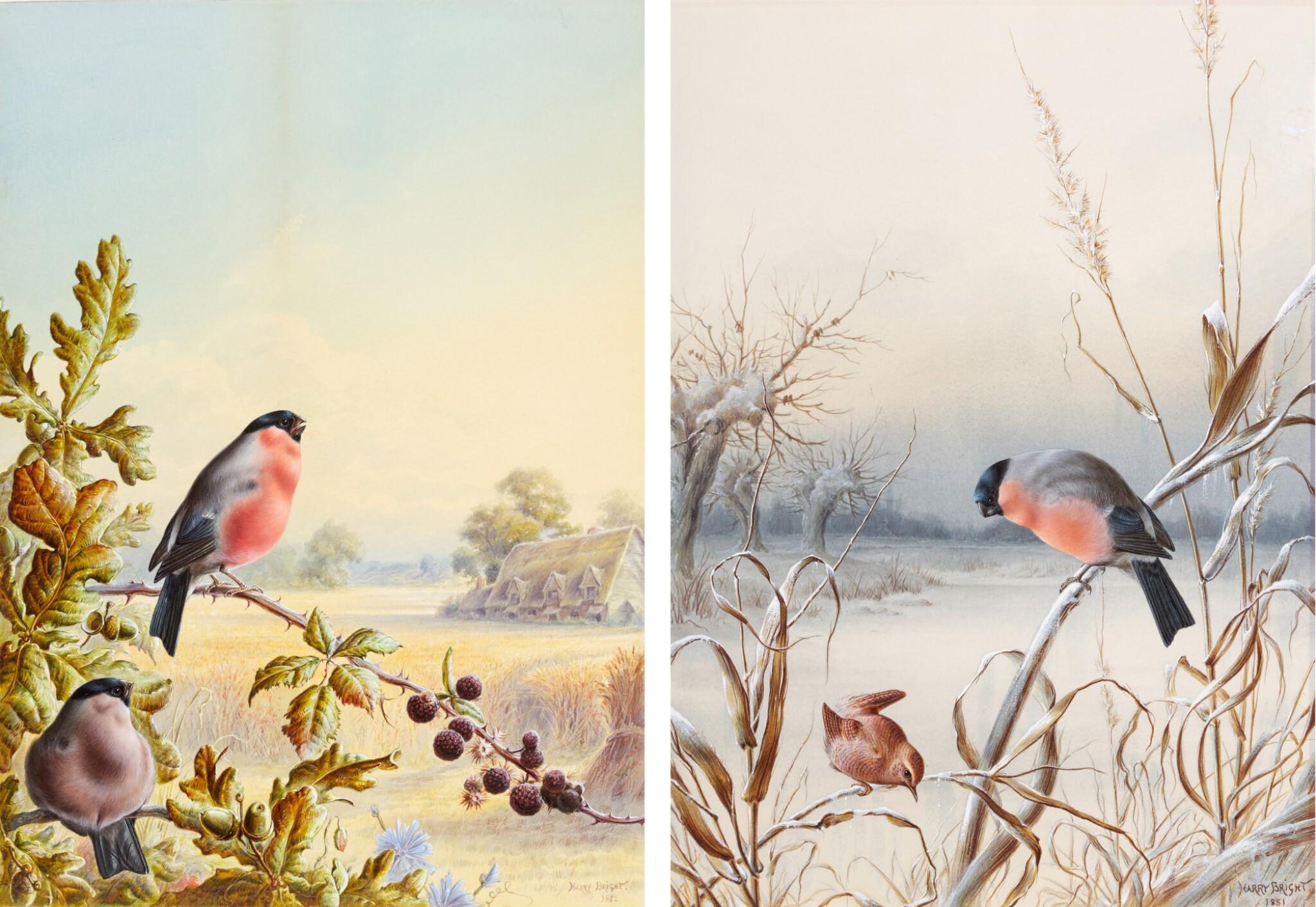 View 1 of Lot 141. Summer - A Pair of Bullfinch; Winter - A Cock Bullfinch and Wren.