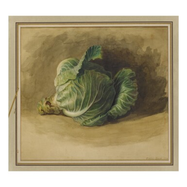 VOLTAIRE COMBE (WILLIAM COMBS) | CABBAGE STILL LIFE, 1904