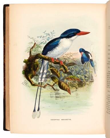 View 3. Thumbnail of Lot 358. Sharpe. A Monograph of the Alcedinidae: or, Family of Kingfishers. 1868-1871. The author's copy..