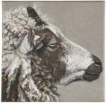 KARIN KNEFFEL     SHEEP